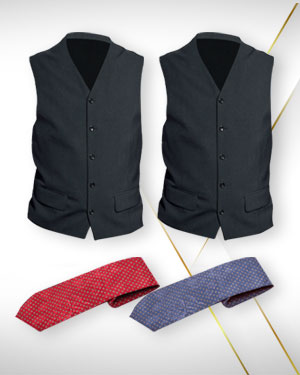 Two Dress evening waistcoats and 2 Neckties for men From Premium Collection